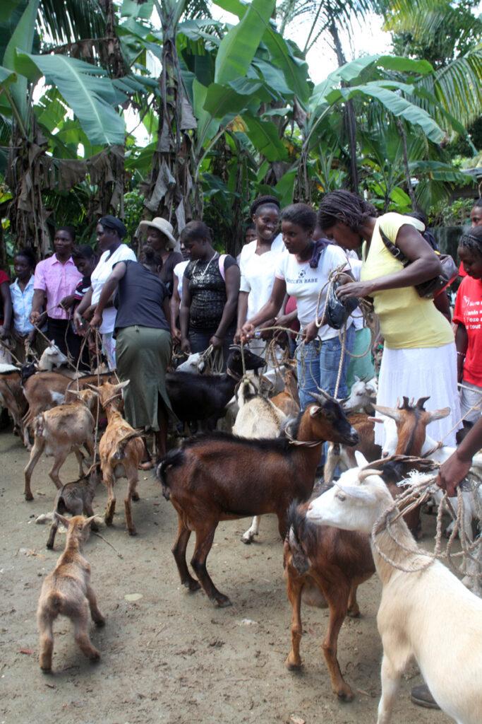Haitian Health Foundation Jeremie Haiti Kate Whitney Lucey 2019-0599